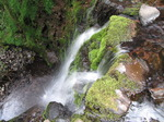 SX14490 Looking down Nant Bwrefwr river waterfall.jpg