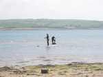 JT00927 Brad and Marijn stand up paddling (sup) on River Taw estuary.jpg