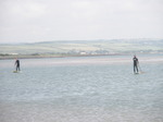 JT00939 Marijn and Brad stand up paddling (sup) on River Taw estuary.jpg