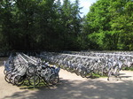 SX14913 White bicycles in Hoge Veluwe National Park.jpg