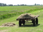 SX15195 Farmers trailer with hay.jpg