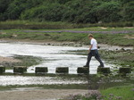 SX15825 Jelle crossing stepping stones over Pennard Pill river.jpg
