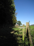 SX16704 Goodrich castle in distance past gate.jpg