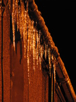 SX17123 Icicles hanging from gutter in Bridgend.jpg