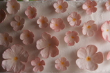 IMG_7025 Detail of flowers on wedding cake.JPG