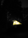 SX18157 Campervan in forrest at night.jpg