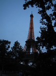 SX18653 Lit up Eiffel tower through trees at dusk.jpg