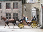 SX20220 Horse drawn carriage.jpg