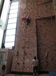 SX24163 Spider Jenni on climbing wall in Bussum.jpg