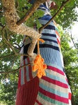 SX24293 Urban knitting on tree at Floriade.jpg