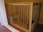 SX25710 DIY Rabbit Hutch.jpg