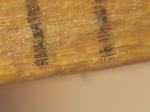 20131102_131932 Millimeter marks on ruler.jpg