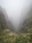 SX32903 View down misty gully.jpg