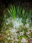 20140212 Hail storm in Llantwit Major