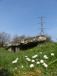 FZ004218 Daisies and electricity pylon at Tinkinswood burial chamber.jpg