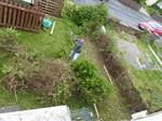 20140510 Removing hedge from front garden