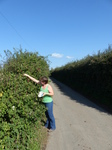 FZ008853 Jenni picking brambles.jpg