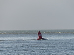 FZ010577 Slanted buoy from tide and wind in Exmouth.jpg