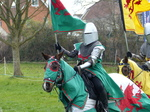 FZ013084 Welsh knight.jpg