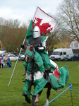 FZ013128 Welsh knight.jpg
