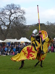 FZ013165 Yellow knight jousting.jpg
