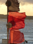 FZ019456 Buoy marker flags on fishing boat.jpg