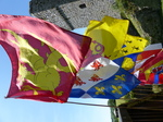 FZ029485 Flags at Carew castle.jpg