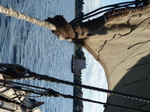 FZ033084 Sailing on viking boat.jpg