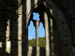 FZ033780 Shadows on Tintern Abbey.jpg